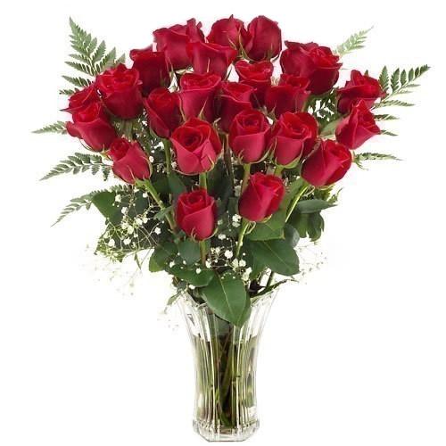 Cuidado de rosas para que duren mas tiempo
